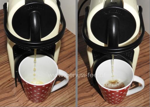 Gourmesso Teekapseln für Nespresso 13