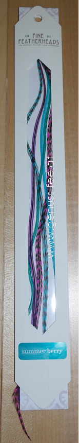 Great Lengths Quill Clip 4